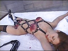 Japanese Tied Up Wax Play Dildo Nose Clip Clothes Pegs Tied Upside Down